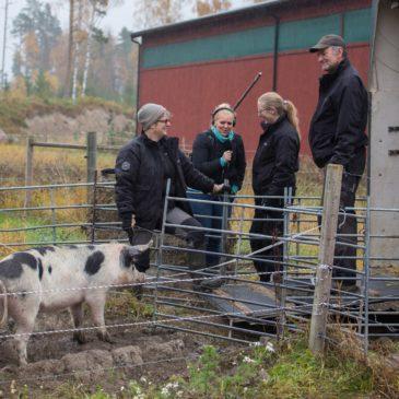 Sveriges radio P4 västmanland sänder direkt från Fallängetorp