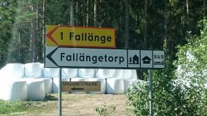 Vallhundstävling i Fallängetorp.